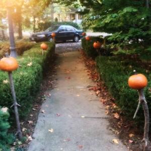 Pumpkin Walkway