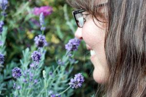 Lavender Farming with Karla